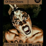 The House of Red Doors #8: Black Magick