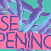 ELSE OPENING /w. DEKMANTEL SOUNDSYSTEM, DJ BORING & More
