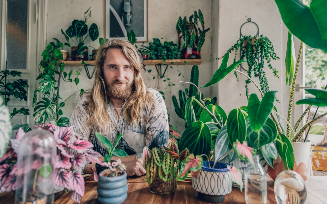 A Comprehensive Guide for Plant Lovers in Berlin