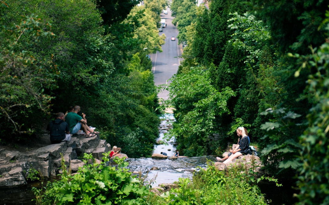 A Guide to Berlin's Best Urban Parks