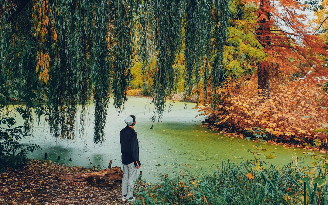 Berlin Autumn Dreams: A Walk in the English Garden at Tiergarten